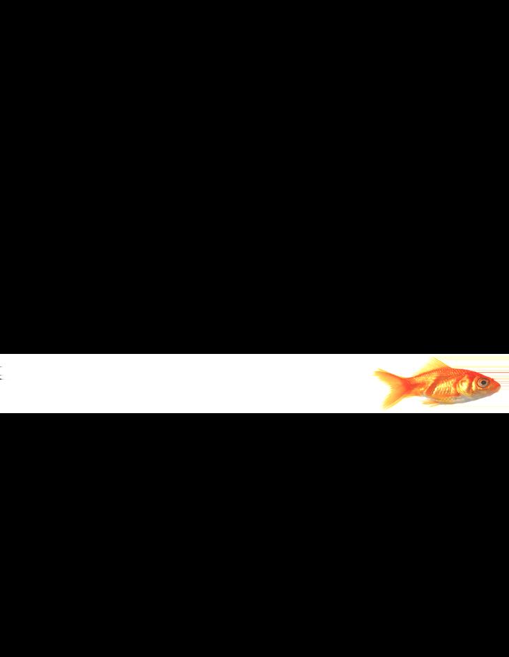 single-fish